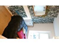Cosy room in Tonbridge