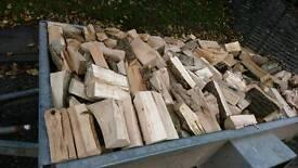 Firewood, hard seasoned logs