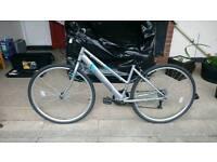 Apollo Woman's bike