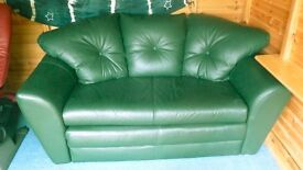 Double Sofa Bed in Racing Green Leather