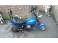 Mini moto chopper £120 ono