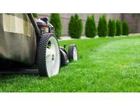 Gardener, Grass Cutting and Garden Maintenance