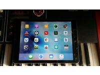 Ipad mini ( touch screen glass repair needed )