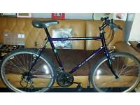 Large Retro Raleigh Bike
