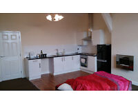 TWO BEDROOM APARTMENT FOR RENT (HIGH SPECIFICATION)