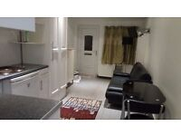 LOVELY STUDIO FLAT / BEDSIT WITH SEPARATE ENTRANCE IN GREENFORD UB6