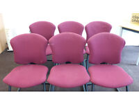 6 meeting/reception chairs