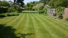 Top Mowing Norwich Garden Services