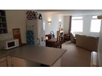 Bright Two Bedroom Flat on Citadel Road The Hoe