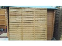 6ft fence panels x2 for sale