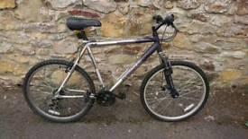 Hybrid Raleigh Mountain/Road bike.