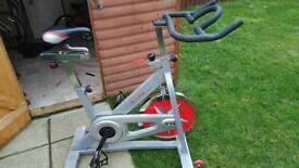 Exercise/spin bike