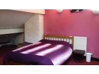 Spacious furnished attic room Meersbrook area (inc w.c./shower/sink).