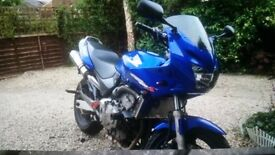 Honda Hornet 600 2000 full MOT (reasonable offers accepted)