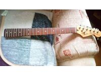 Stratocaster Neck