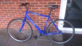 Blue Apollo CX Urban Motion Bicycle