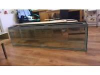 5.5 foot bare fish tank for sale