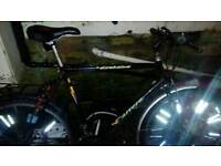 Mens mountain bike in good working order 21 gears and both brakes all workin