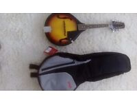 Mandolin brand new, never used with carry cover