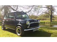 1988 Classic Austin Mini Jet Black Ltd Edition New MOT 49000 Miles Mint Bodywork Excellent condition