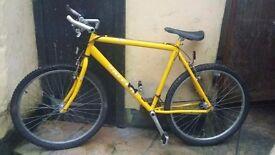 raleigh max mens mountain bike 15 speed