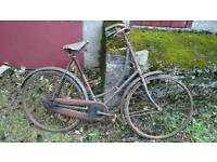 Vintage Collection of Bicycles 1950-70's