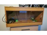 3ft Wooden Reptile Vivarium