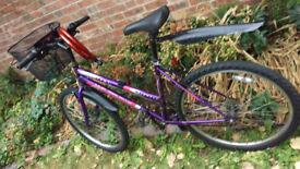ladies bicycle. .7
