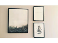 Set of 3 pictures with frames
