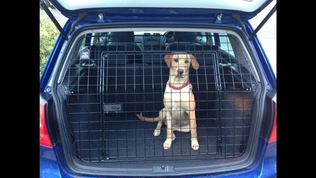 Volkswagen Vw Golf Mk5 6 Dog Guard Tailgate Cage Agility