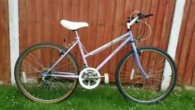 Adult Mountain Bike in Good Condition