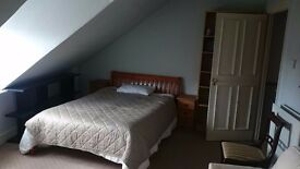 Large Double Room in Central of Twickenham 165pw
