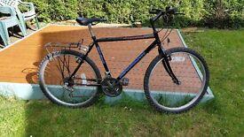 Townsend Beartooth mens mountain bike