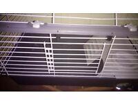 Rabbit, Guinea pig cage