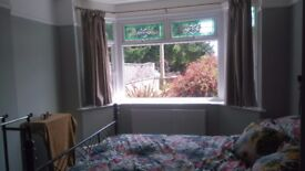 Large clean double room in peaceful household buddy up needed
