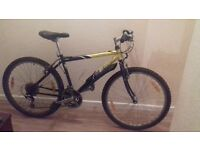 Scott timber bike