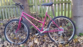 Fully Serviced Unisex City Bike with Road Forks