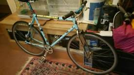SIGNAL SPEED BIKE FOR SALE NO OFFERS