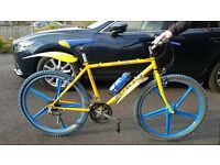 Excaliber X-100 Italian Downhill Mountain Bike