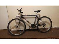 Classic corniche bike