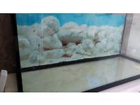 175ltr fish tank
