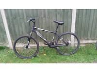 "Mountain bike 17"" Black"