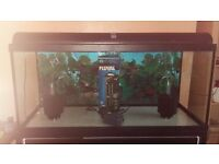 3ft Aquarium with fully assembled Cabinet & extras.