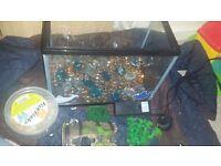 Small fish tank starter kit