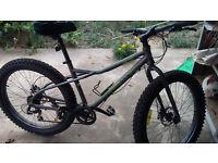 WCA Mountain bike with fat boy tyres