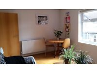 Beautiful and spacious one bedroom furnished maisonette to rent in Victoria Park area