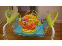 Fisher Price Jumperoo - Step-n-Play, top of the range