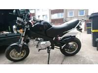 Pit bike 125cc Road legal 2014