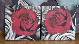 Rose Canvas pictures