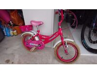 Bumper Sparkle Child's Bike